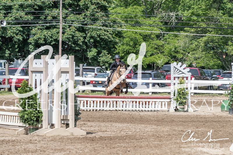 BRV Charity Horse show-9231