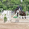 BRV Charity Horse show-9218