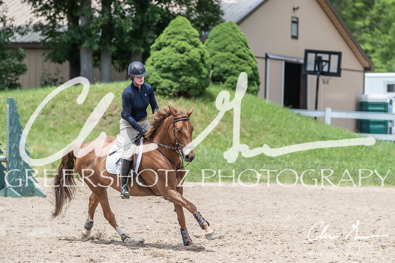 BRV Charity Horse show-8943