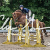 BRV Charity Horse show-8931