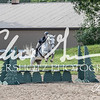 BRV Charity Horse show-9285