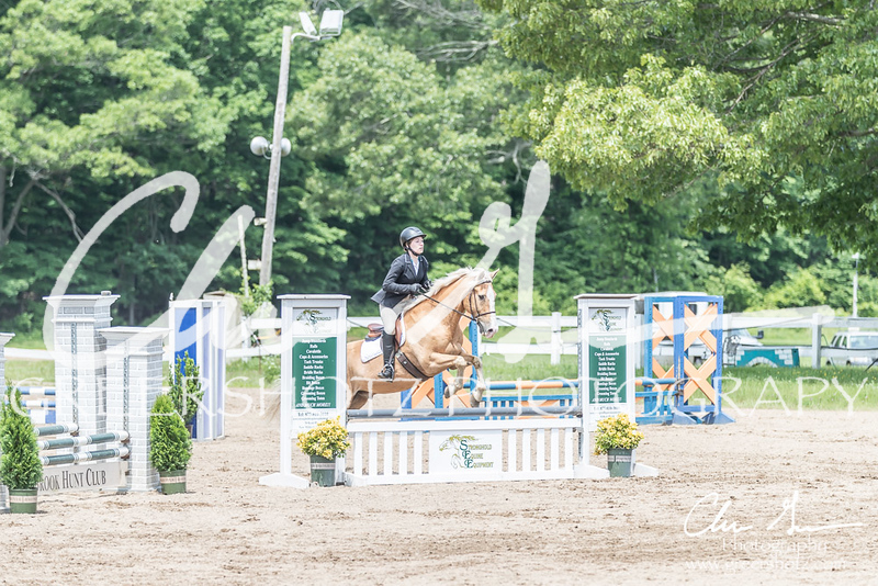 BRV Charity Horse show-8609