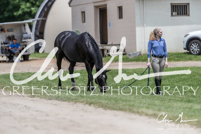 BRV Charity Horse show-8886
