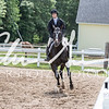 BRV Charity Horse show-8809