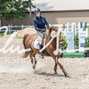 BRV Charity Horse show-8938