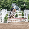 BRV Charity Horse show-9228