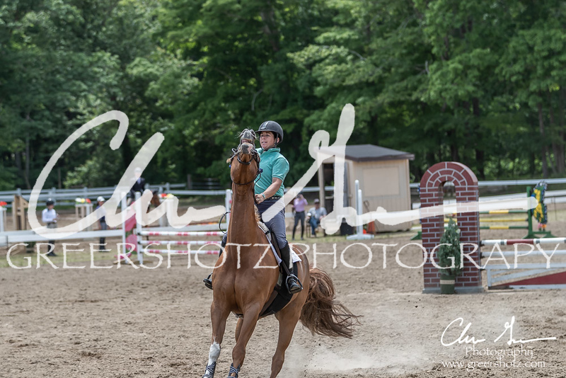 BRV Charity Horse show-8967