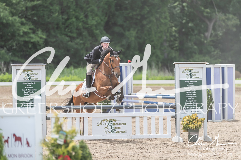 BRV Charity Horse show-9012