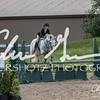 BRV Charity Horse show-9295