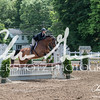 BRV Charity Horse show-8462