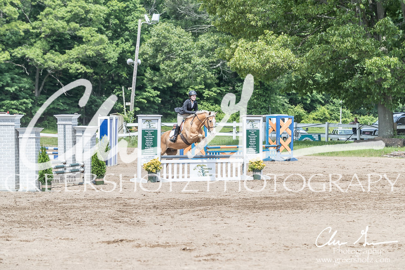 BRV Charity Horse show-8513