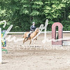 BRV Charity Horse show-8592