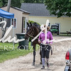 BRV Charity Horse show-8733