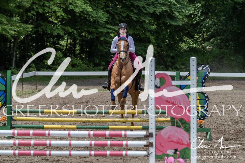 BRV Charity Horse show-8716