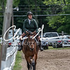 BRV Charity Horse show-8658