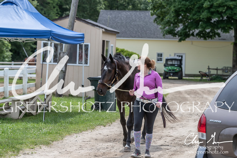 BRV Charity Horse show-8736