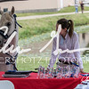 BRV Charity Horse show-9028