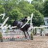BRV Charity Horse show-8828