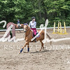BRV Charity Horse show-8768