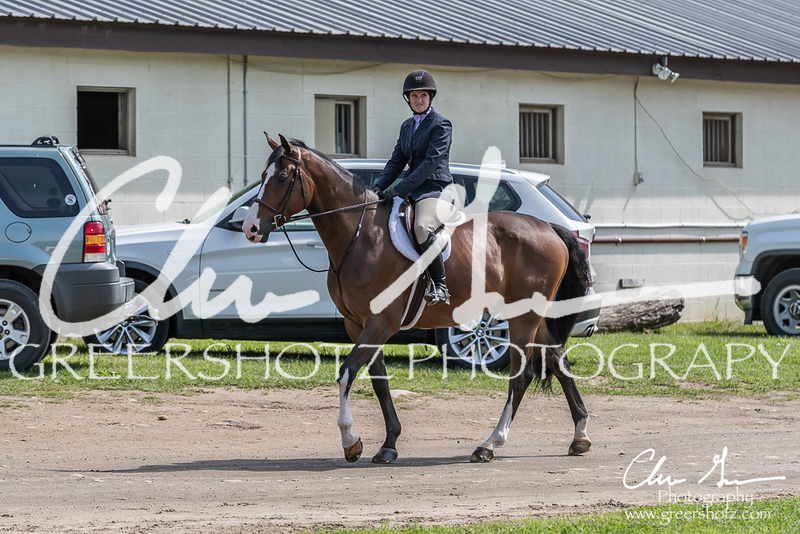 BRV Charity Horse show-8314