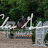 BRV Charity Horse show-8797