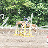 BRV Charity Horse show-8590