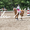 BRV Charity Horse show-8766