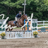 BRV Charity Horse show-8755