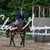 BRV Charity Horse show-8868