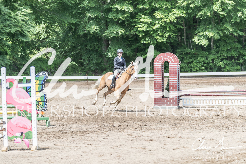 BRV Charity Horse show-8594