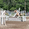 BRV Charity Horse show-9242