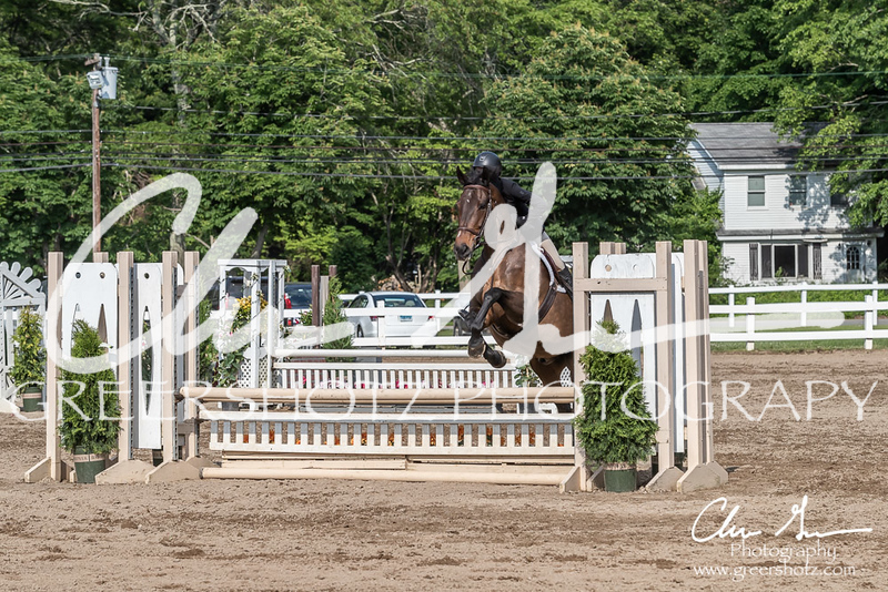 BRV Charity Horse show-9332