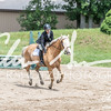 BRV Charity Horse show-8518