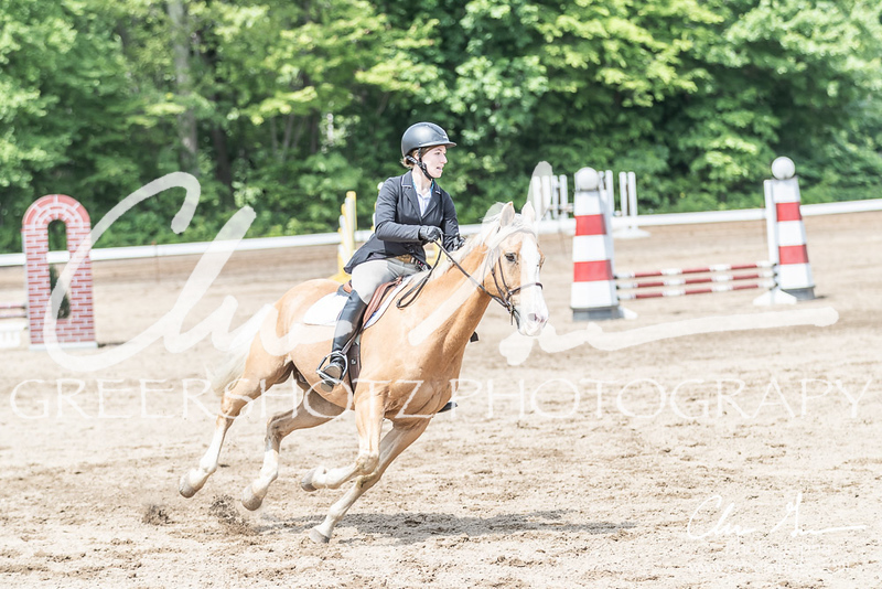 BRV Charity Horse show-8607