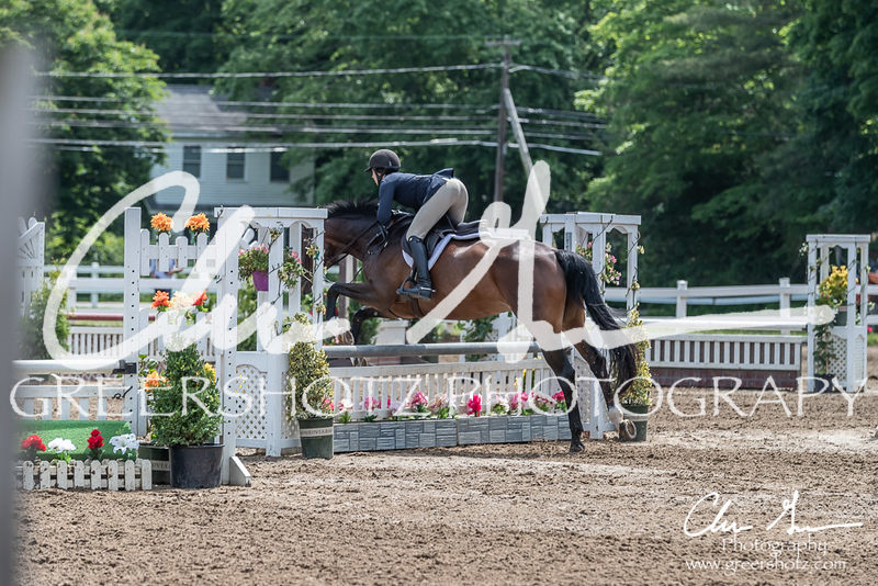 BRV Charity Horse show-8474