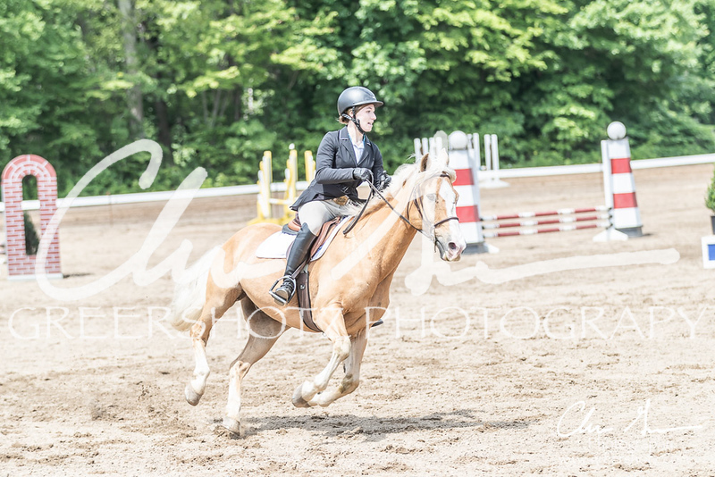 BRV Charity Horse show-8608
