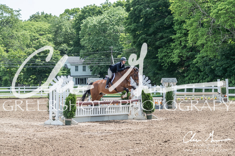 BRV Charity Horse show-8528