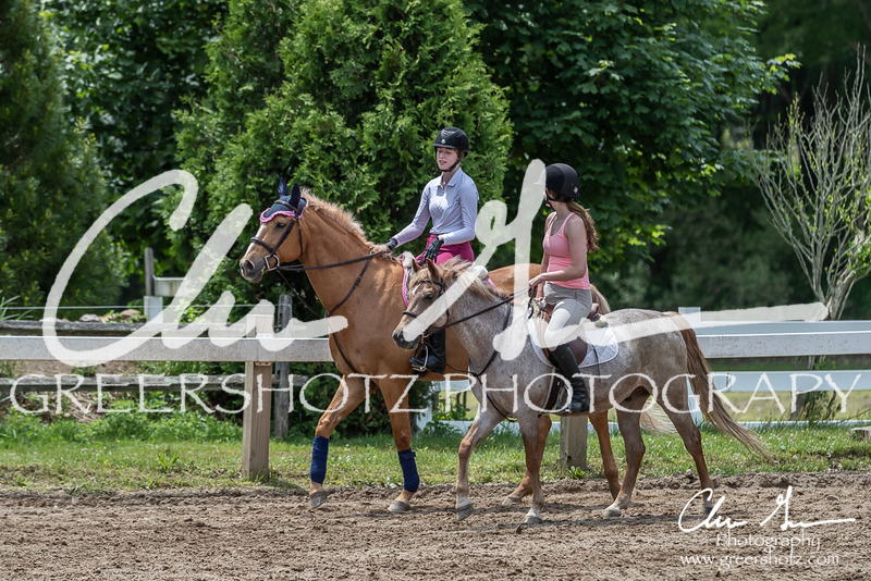 BRV Charity Horse show-8791