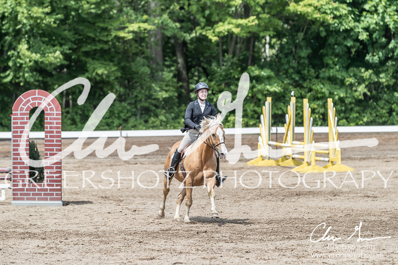 BRV Charity Horse show-8507