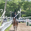 BRV Charity Horse show-8473