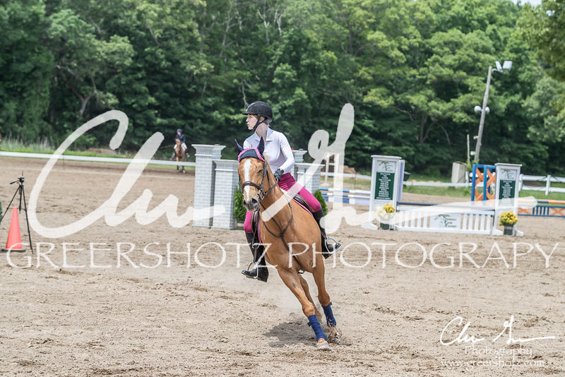 BRV Charity Horse show-8764