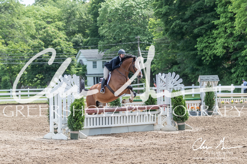 BRV Charity Horse show-8554