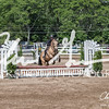 BRV Charity Horse show-9244