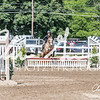 BRV Charity Horse show-9213