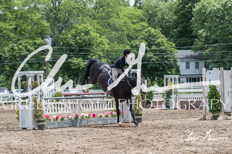 BRV Charity Horse show-8829