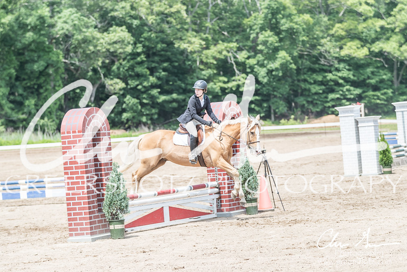 BRV Charity Horse show-8596