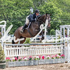 BRV Charity Horse show-8901