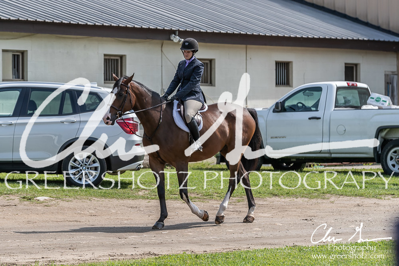 BRV Charity Horse show-8313