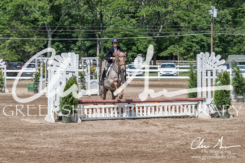 BRV Charity Horse show-9241