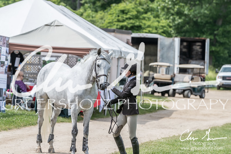 BRV Charity Horse show-9186